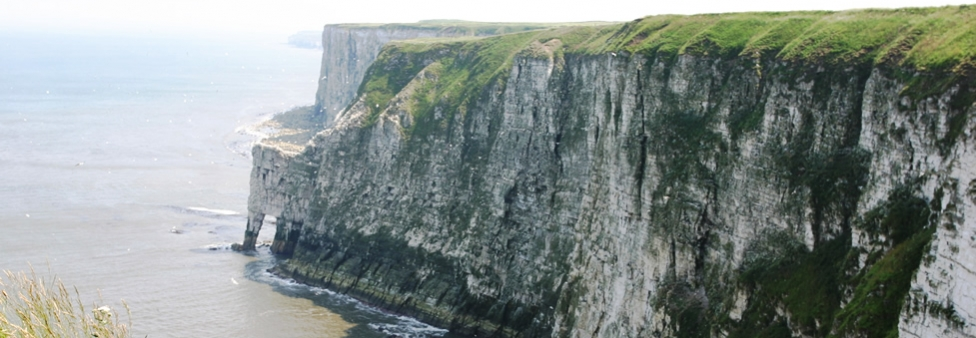 Flamborough - Flamborough/Bempton