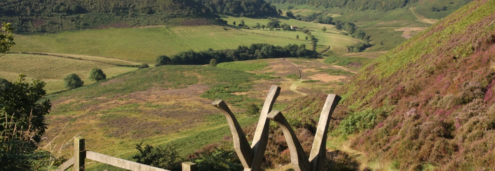Hole of Horcum - Pickering