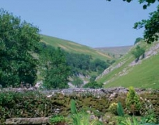 The Ghyll Holiday Cottages - View