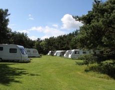 Ladycross Plantation Caravan and Lodge Park