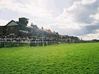 pontefract racecourse sports amp leisure in yorkshire